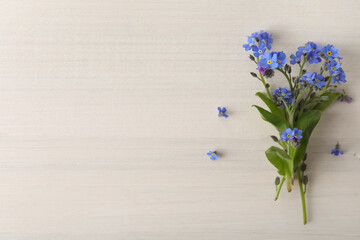 Fototapeta Beautiful blue forget-me-not flowers on white wooden table, top view. Space for text
