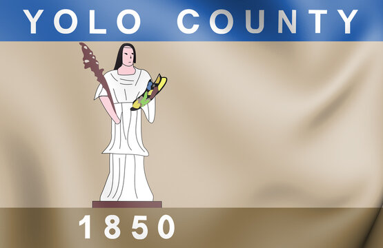 3D Flag of Yolo county (California state), USA. 3D Illustration.
