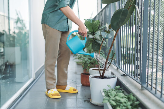 man watering house plants on the balcony