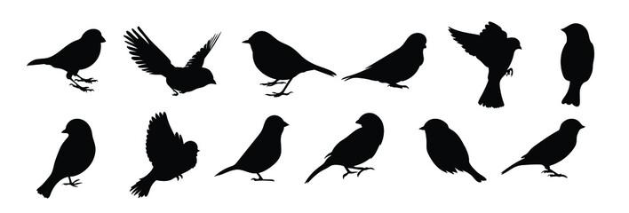 Fototapeta Set of black bird silhouettes. Vector elements for design.