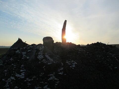 Sonnenaufgang hinter einem Baumstamm - Baum, sunrise, dawn, Baumstumpf