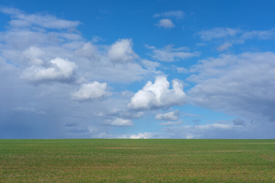 white clouds in a blue sky over a green field. beautiful spring landscape