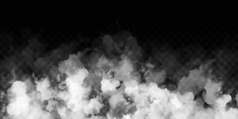Fototapeta Vector realistic isolated Smoke effect for decoration and covering on the transparent background.