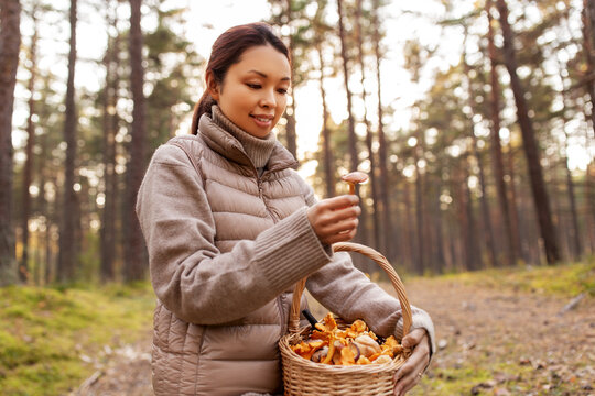 picking season, leisure and people concept - young asian woman with mushrooms in basket in autumn forest