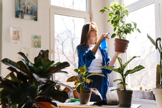 Young woman florist taking care of pot plants