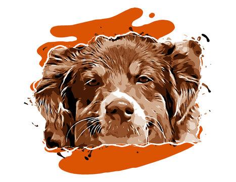 Australian sheep dog shelherd isolated digital art illustration. Clipart of puppy domestic cute pet, hand drawn animal, dog loss and pets birthday gift. Digital Art dog paint