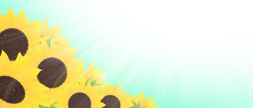 ひまわり 背景 太陽の光 ブルー 横長