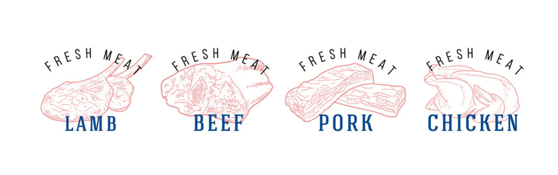 Fresh raw meat engraved design