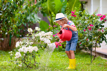 Fototapeta Child gardening. Boy with watering can in garden. obraz