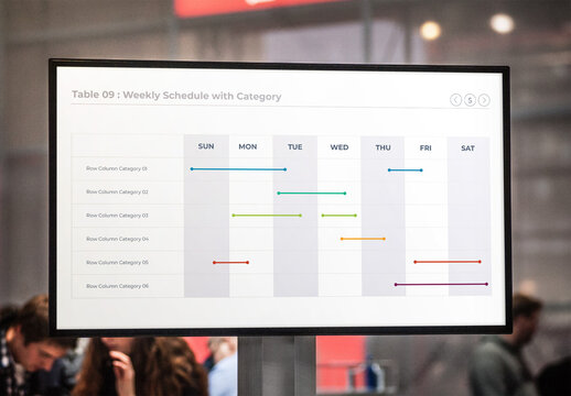 Weekly Project Schedule with Category and Timeline Infographic