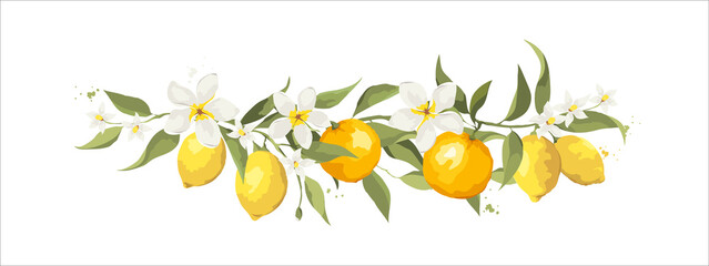 Summer card with jasmine flowers and citrus branch. Floral design elements, vector illustration, label.