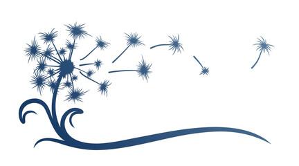 Fototapeta The symbol of field dandelion Flower with flying seeds.