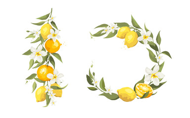 Summer card with jasmine flowers and citrus branch. Floral design elements for wedding invitation, vector illustration, label.