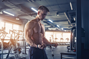 Fototapeta Muscular Fitness Bodybuilder Doing Heavy Weight Exercise For Bic obraz