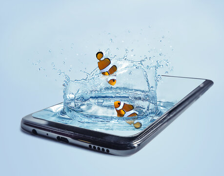 plashing water with fish in a smartphone.