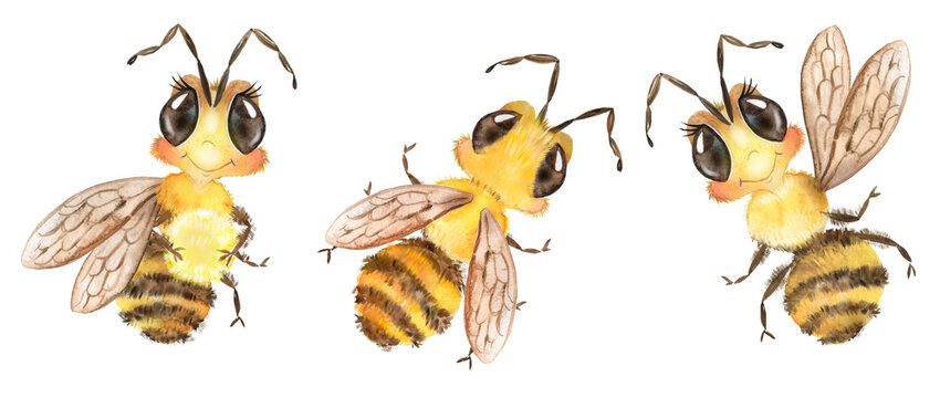 Watercolor illustration with cute bees, funny insects, baby pictures