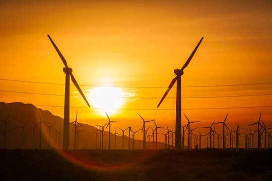 Sun Setting Over Electircal Power Lines and Wind Turbine Farm Silhouetted Against Poluted Desert Sky