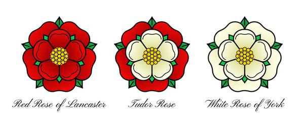 Fototapeta Tudoe rose of Englnd vector illustration.