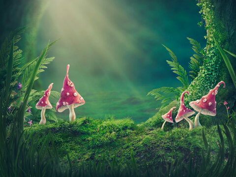 Magic forest background,