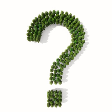 Concept or conceptual group of green forest tree isolated on white background, question mark. 3d illustration metaphor  for nature, conservation, global warming, environment, ecology, climate