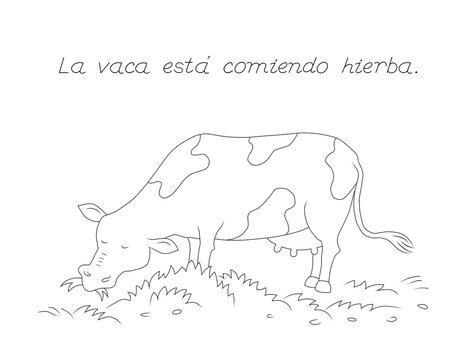 dibujo para colorear de una vaca , actividades para niños que están aprendiendo el idioma español