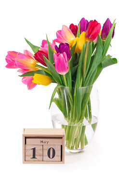 May 10 - Mother's Day. Many beautiful colorful tulips with leaves in a glass vase isolated on transparent background. Photo with fresh spring flowers for any festive design