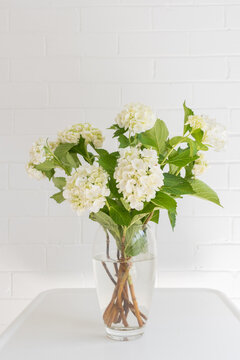 Vertical view of white hydrangea flowers in glass vase on table against painted brick wall (selective focus)