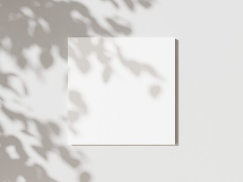 Empty white square poster mockup with soft hawthorn leaves shadows on neutral light grey concrete wall background. Flat lay, top view 3D illustration