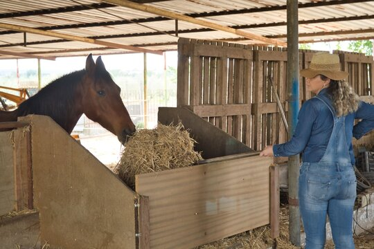 Blonde woman in a hat and jeans throwing food to a horse in a barn