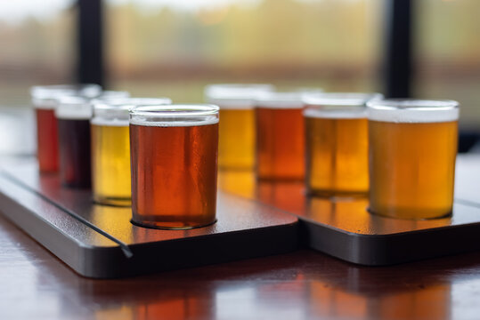Beautiful variety of craft beer samples on a restaurant table