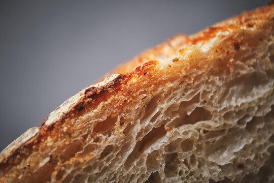Organic sourdough bread crumb with whole wheat flour