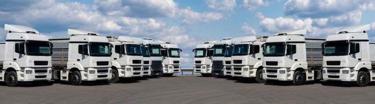 Semi trucks are parked in a rows