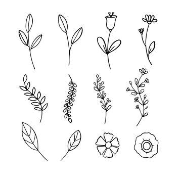 Set of botanical flower doodle elements, ornament floral hand drawn for inviation card, Illustration,  vector