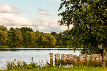 Fototapeta Stone bridge pillars ruins in Daugavas river water during sunny summer day framed by green and yellow grass and green trees. Scenic photo of pier remains in water. Sunny day at riverside.