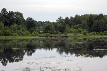 Krajobraz z jeziorem i pomostem na tle pięknego nieba i bujnej roślinności