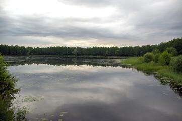 Krajobraz z jeziorem i roślinnością ciągnącymi się po horyzont na tle pięknego nieba.