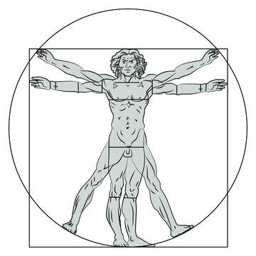 Vitruvian man, stylization. Vector illustration isolated on white background.