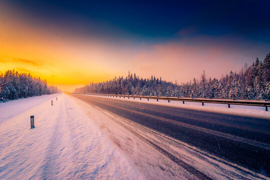 Sunrise on a clear winter morning, the headlights of approaching cars on a country road into a snowfall passing through a pine forest. View from the side of the road
