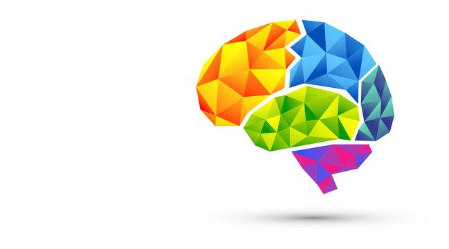 icona, network, cervello, fantasia, colori