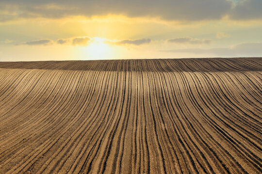 plowed field sunset landscape agriculture