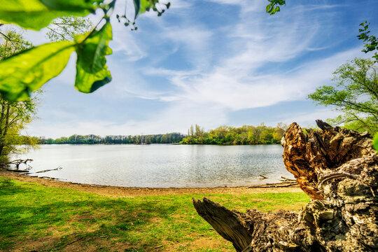Sieglarer See, ein Dorado für Wasservögel
