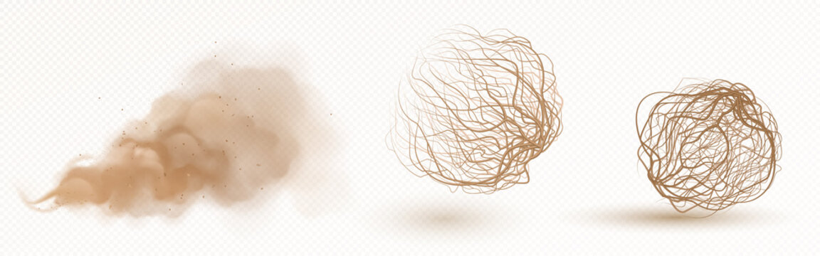 Tumbleweed, dry weed ball and brown dust clouds isolated on transparent background. Vector realistic set of flow desert sand and dead plants, rolling dry bushes, old tumble grass in prairie