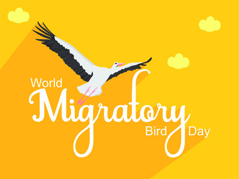 World Migratory Bird Day Creative Design