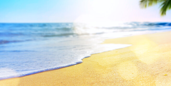 abstract summer vacation background of blurred beach sand, palm tree and sea waves
