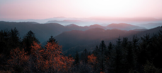 Amazing panorama of autumnal autumn fog landscape in black forest panorama banner long in the morning, with colorful orange red leaves