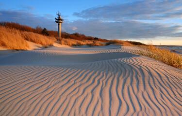 Wydmy na wybrzeżu Morza Bałtyckiego.