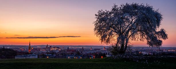 Fototapeta Sunset over Krakow during Spring, view from Krakus Mound. obraz