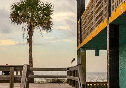 An old, vintage motel balcony with a palm tree on the beach.