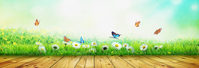 Beautiful nature view of butterfly on wooden background.
