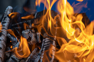 Burning fire, wood, coals for barbecue. Camping BBQ preparation